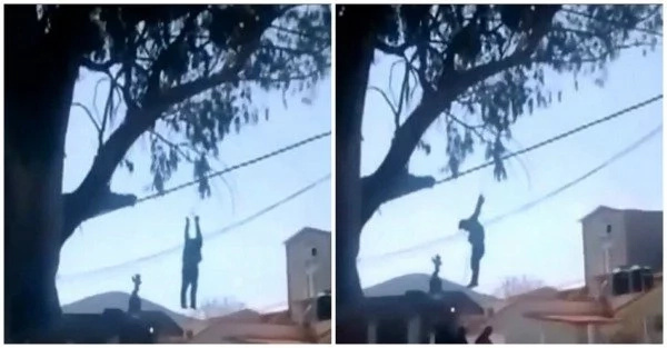Neighbors catch burglar and hang him from tree by his wrists in broad daylight (photos, video)