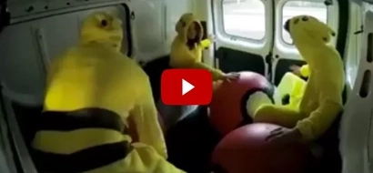 OMG! Pokémon fights back; what happened to the first victim will make you laugh!