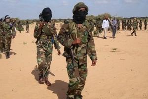 Wanamgambo wa al-Shabaab washambulia tena!
