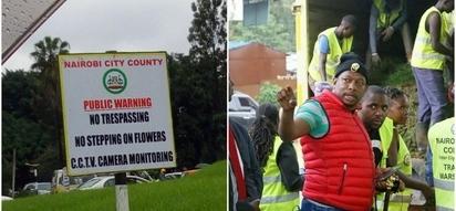 Ukikanyaga 'Nyasi za Sonko' jijini Nairobi, utaadhibiwa kisheria (Habari kamili)