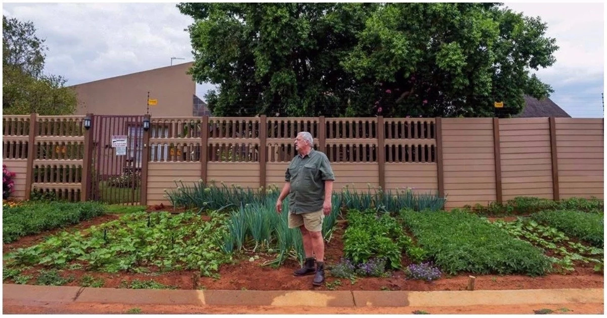 Retired policeman, 62, starts vegetable garden on his pavement to feed the hungry