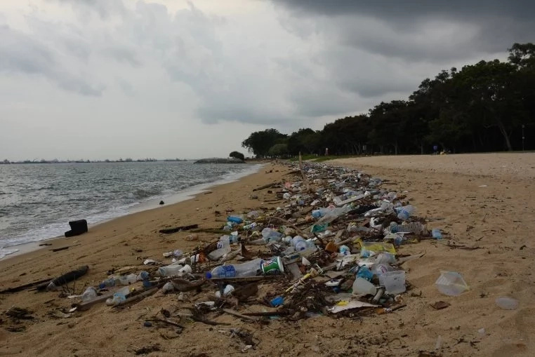Garbage washed up in a beach in Singapore (Wikipedia)