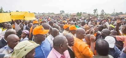 Raila's 'favourite' governor absolutely FRACTURES  Jubilee supporter