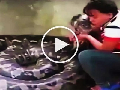 Terrifying Valentine's Day date! Brave Filipina hugs and kisses gigantic snake