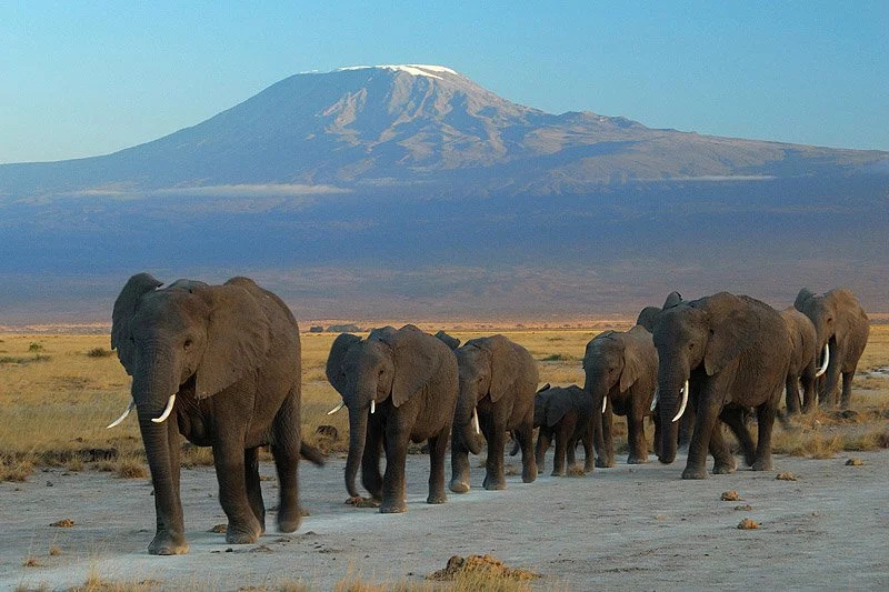 see top five destinations in Kenya to travel to this Easter