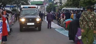 Prophet Owuor's grand arrival in Nakuru excites residents (photos)