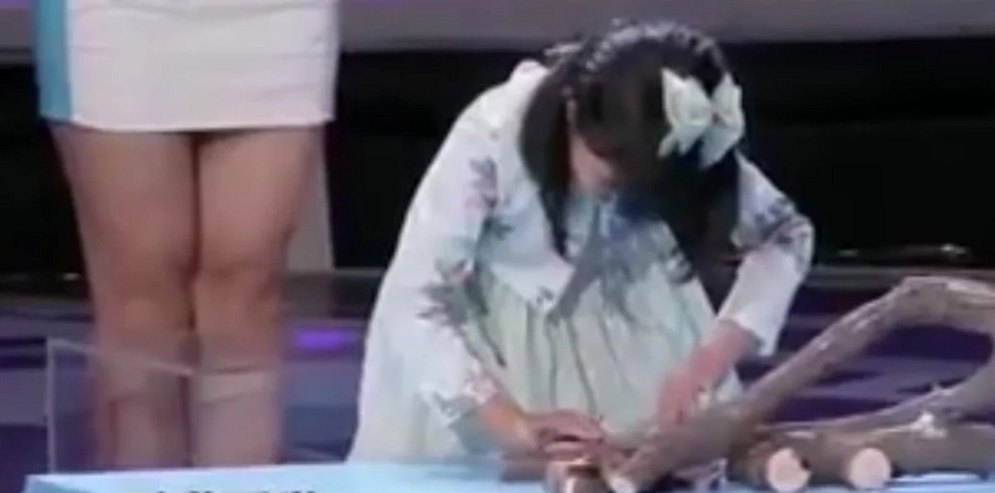 Chinese girl puts to sleep scary animals live on stage