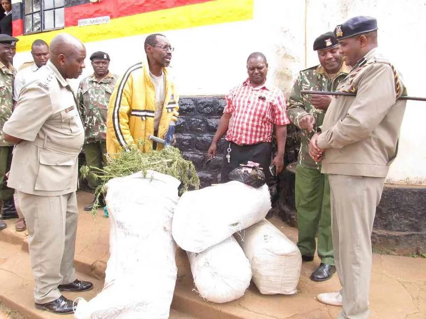Police nab disabled man, six others with drugs worth KSh500,000