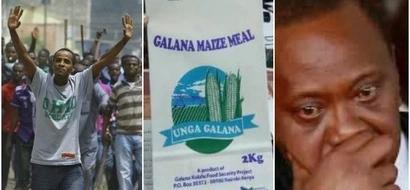 Outrage as cheap Maize flour to last only hours despite Kenyans desperation