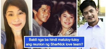 Meron daw kasing magseselos? Sheryl Cruz and Romnick Sarmenta almost reunited for 'My Guitar Princess'