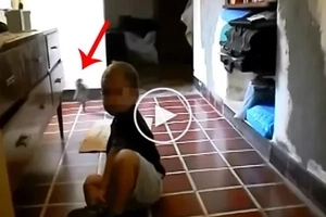 A mother was filming her son while this creature was caught on a video...