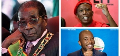 SA opposition parties welcome news of Mugabe's resignation