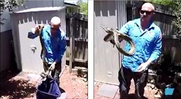 Heroic Man Fights Off A Python Strangling His Dog To Death