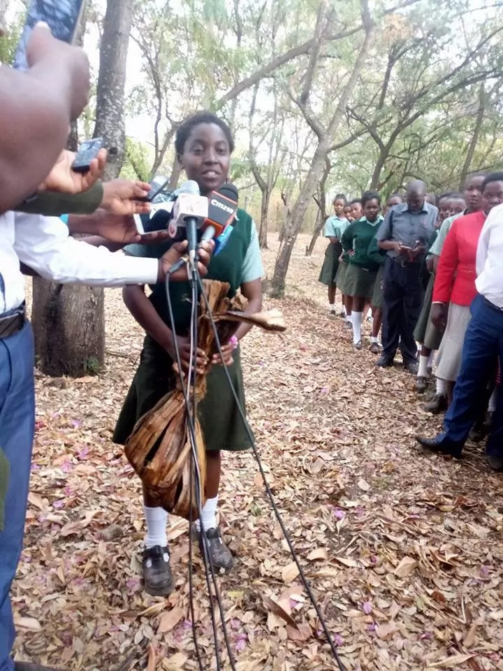 Kenyan girl who made shopping bag from banana fritters appointed Environment Ambassador