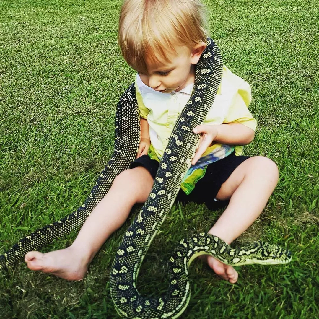 Snake boy! See fearless 1-year-old snake catcher who enjoy playing with reptiles (photos)