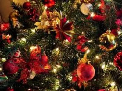 Curioso Árbol de Navidad en Argentina causó revuelo en las redes