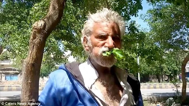 Man, 50, is addicted to eating trees when he was poor