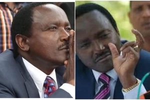 Mombasa Senator and MP in fierce fist fight in front of Kalonzo Musyoka