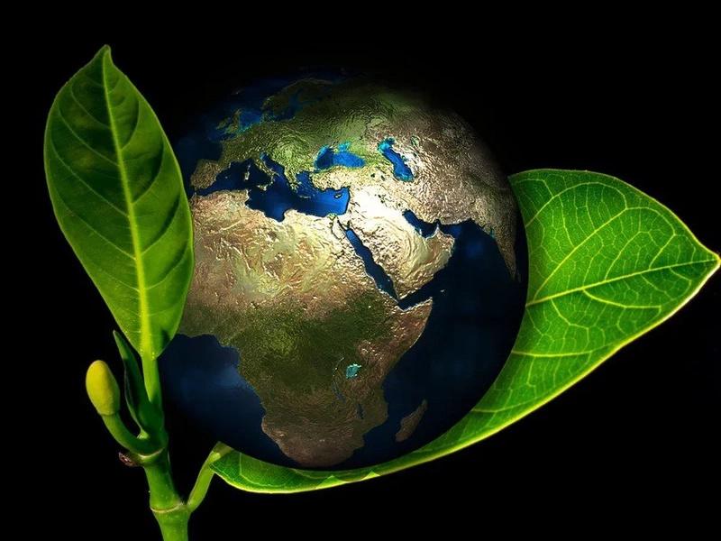 FIMA, un espacio para la presentación del Sistema Nacional Ambiental
