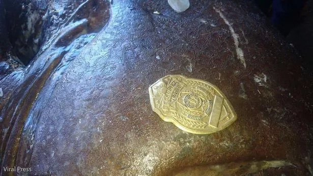 A police badge was found INSIDE large fish... probably ate the person! (photos)