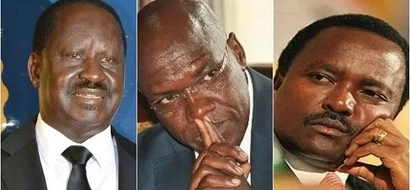 No nonsense opposition senator gives Raila and Kalonzo a lecture on 48 laws of power