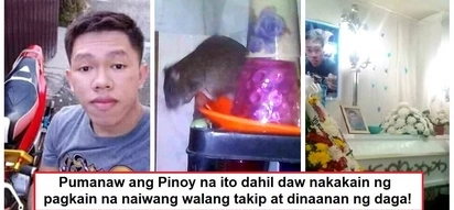 Namatay dahil sa daga! Viral story of Pinoy who died due to leptospirosis shows importance of proper storage of food