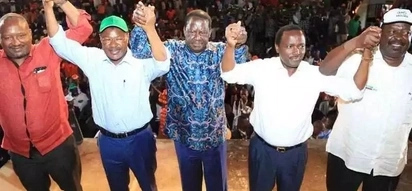 Opposition unity suffers setback as another Luhya politician announces presidential ambitions