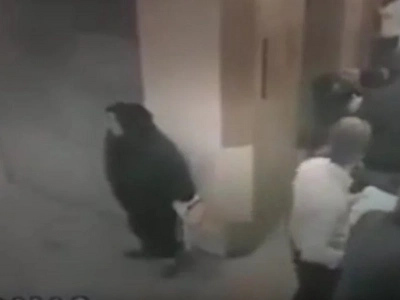 Muslim Woman Takes A Sneaky Sh*t In A Public Place