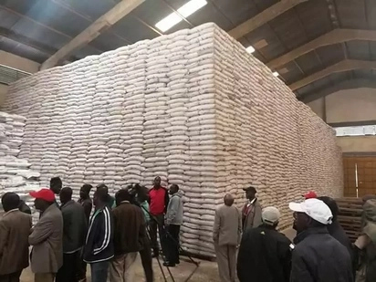 Rift Valley farmers receive wrong fertilizer from government ahead of planting season