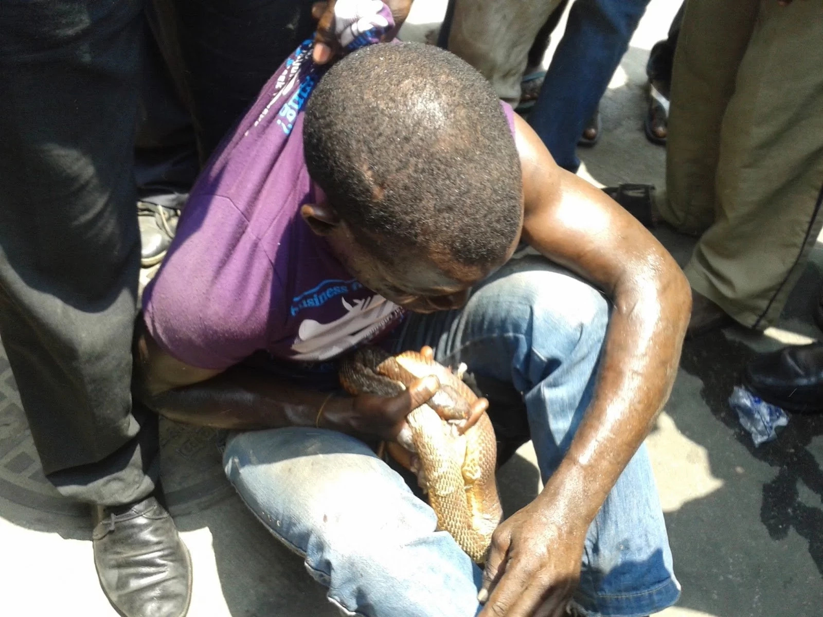 Young man steals witch doctor's wallet and it allegedly turns into a deadly cobra (photo)