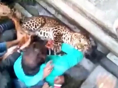 Horrifying Footage Of Wild Leopard Brutally Attacking People In India