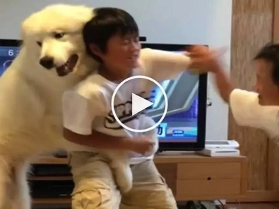 Tama na ang away! Affectionate pet dog attempts to stop violent fist fight between brothers