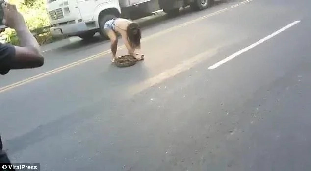 Brave woman stuns men by removing 2.1-meter python that was blocking traffic