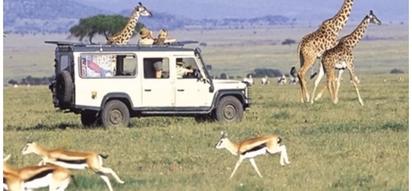 Good news as US scraps travel warnings against Kenya