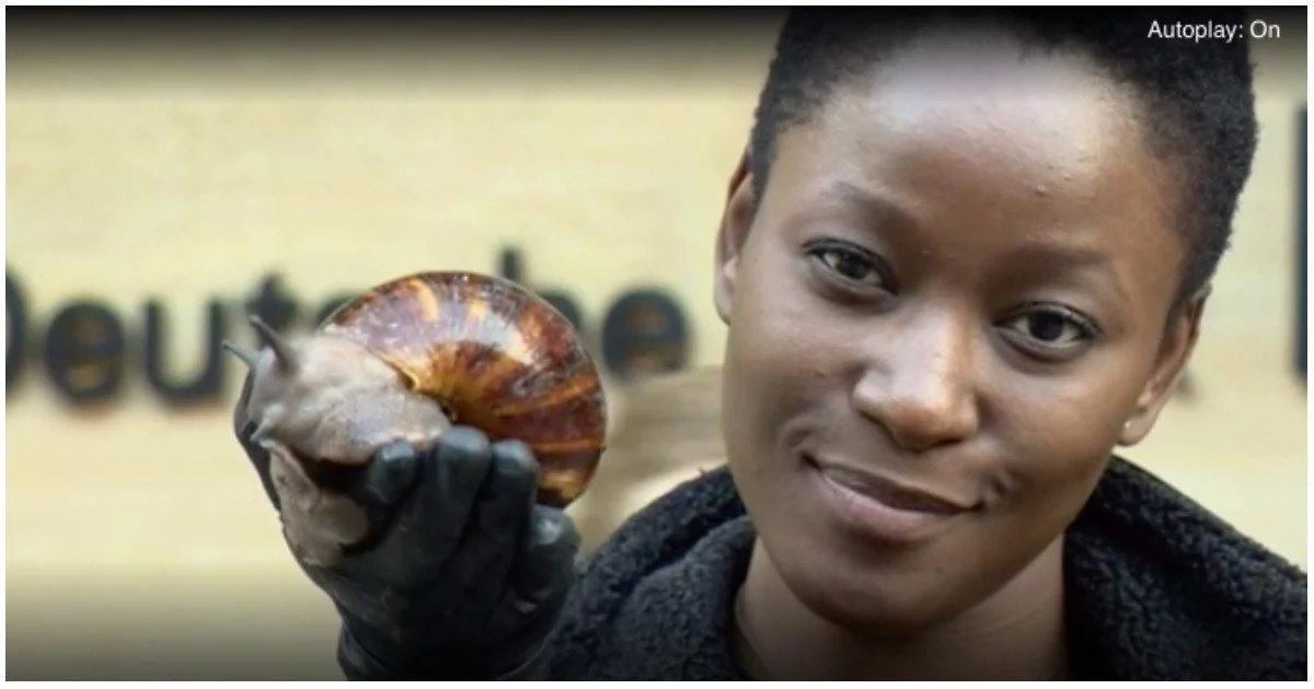 Inspiring! Woman quits well-paying corporate job to start successful snail farming business