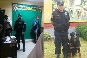 Un perro se convirtió en héroe, frustró un asalto y capturó a los ladrones