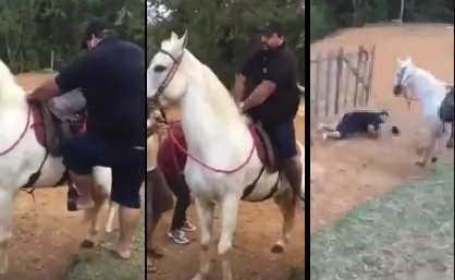 VIDEO: Horse attacks obese man who tried to ride on its back