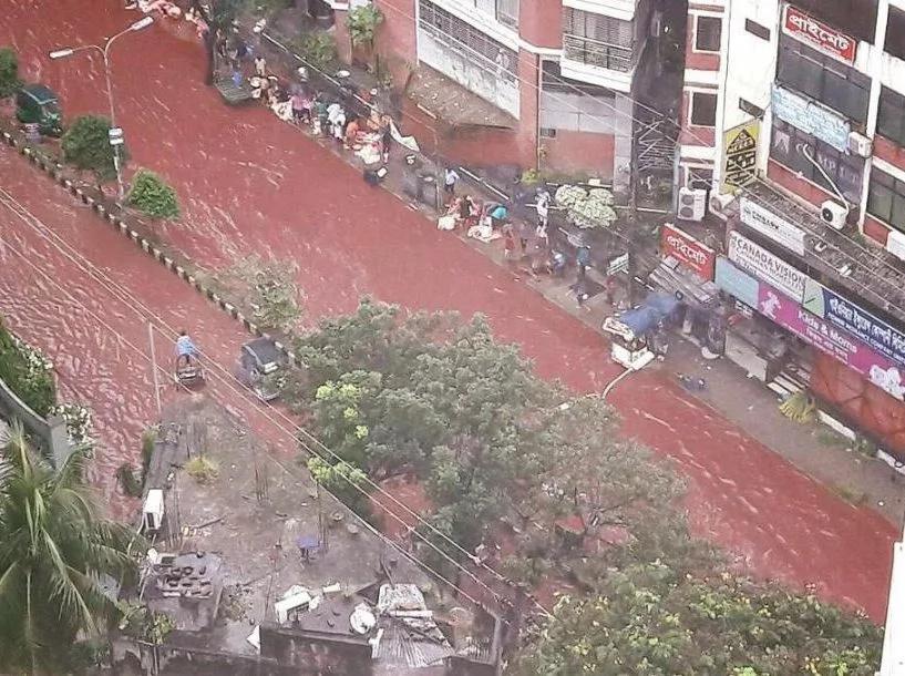 Ríos de sangre por sacrificios animales en Dhaka