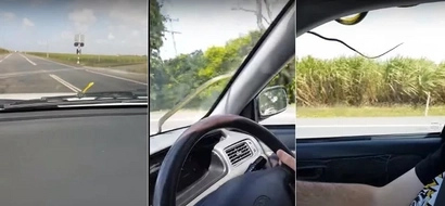 A snake is trying to crawl into this Australian couple's speeding car on highway