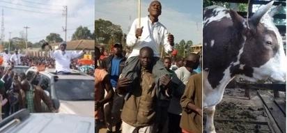 Kakamega ni Raila Odinga sitaki mchezo – Boni Khalwale