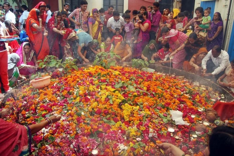 Why Indians worship snakes and celebrate them with milk, sweets and flowers offerings every year