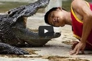 WATCH: 7 Brutal alligator attacks on humans caught on video!