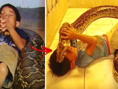This boy has a deadly bestfriend: a giant snake! Their interaction concerned & terrified netizens