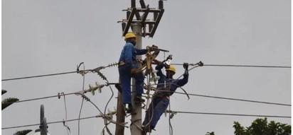 Pigo kuu kwa Kenya Power baada ya kulazimika kumfidia mkulima Ksh 1.3 milioni