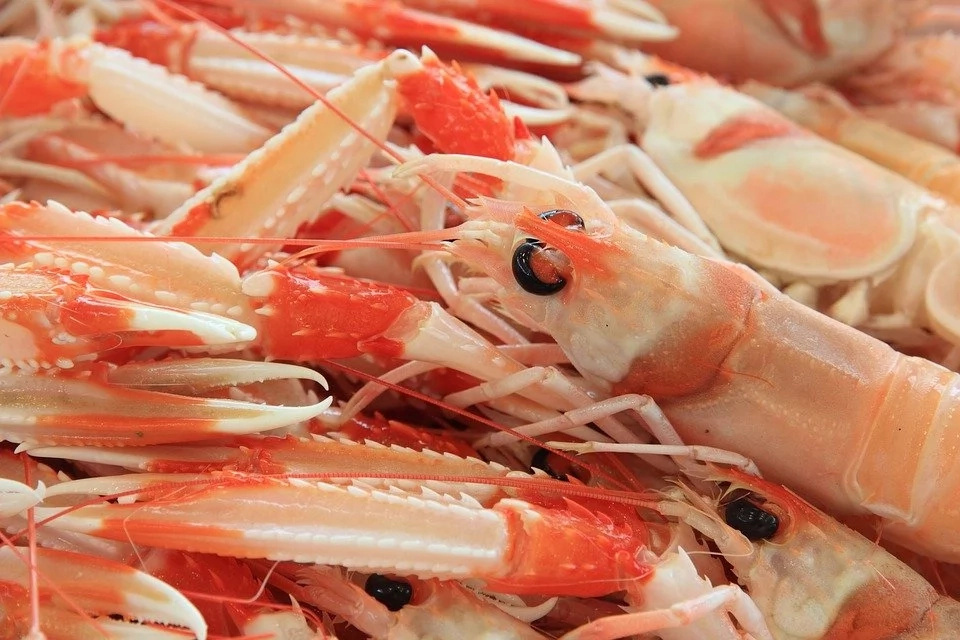 That what happens with your body if you eat shrimp that\'s not deveined