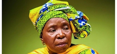 If Dlamini-Zuma wins in December the ANC loses in 2019 according to research