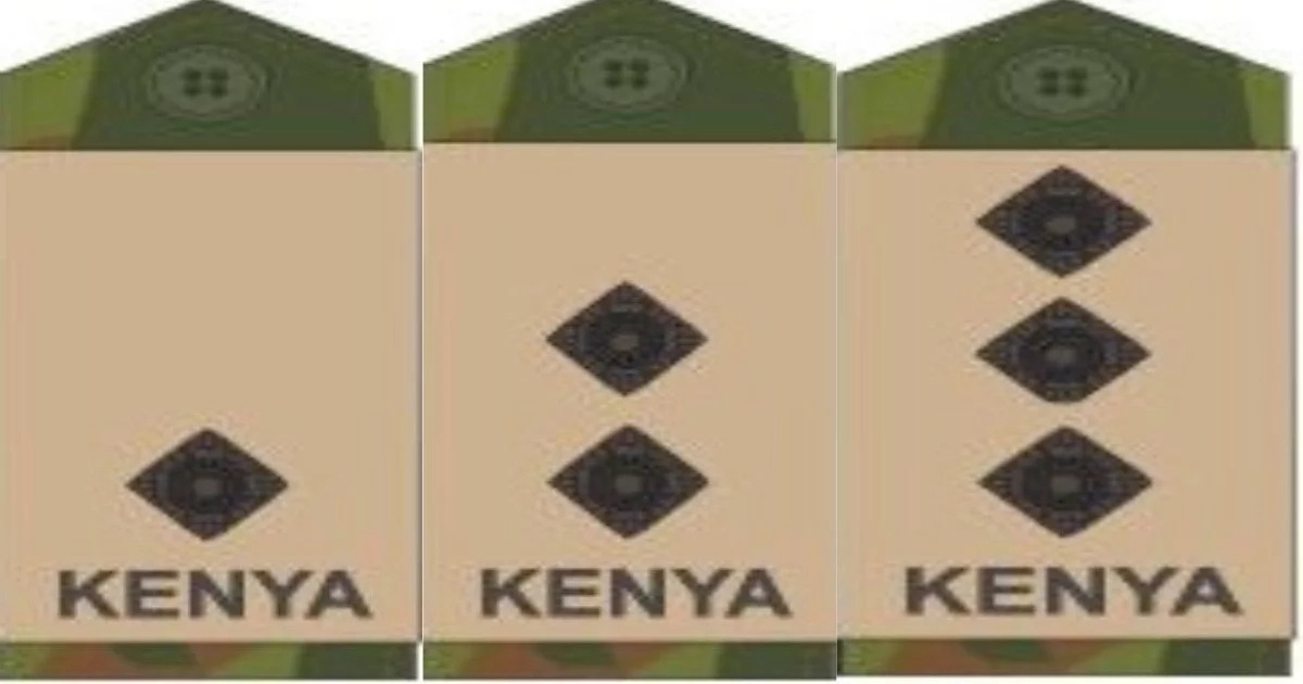 16 common KDF badges and their meaning that all Kenyans should understand