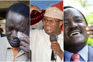 Wiper Party senator goes hard on Raila Odinga