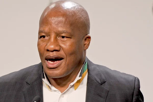 ANC chief whip says new ANC president should force Zuma to resign