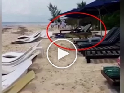 The crocodile entering the beach video went viral